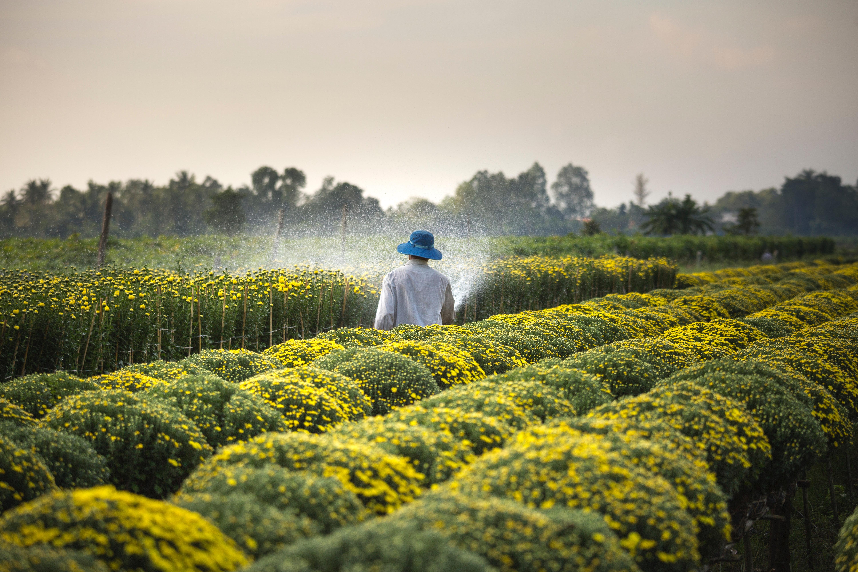 Títulos agrícolas chegam a novos setores do mercado