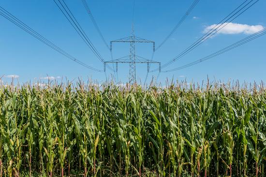 Bioprodutos é a solução para a falta de energia elétrica