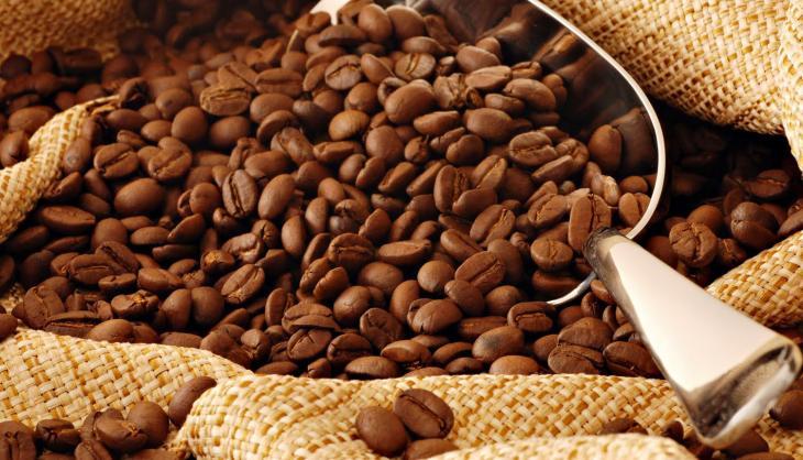 Brasil exporta 40,6 milhões de sacas de café em 2019 e bate recorde histórico