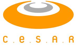 Cesar e Sebrae lançam programa