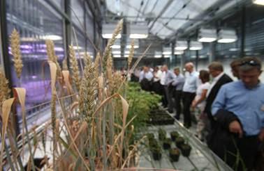 Clariant amplia suporte à pesquisa e desenvolvimento para enfrentar os desafios do setor agrícola