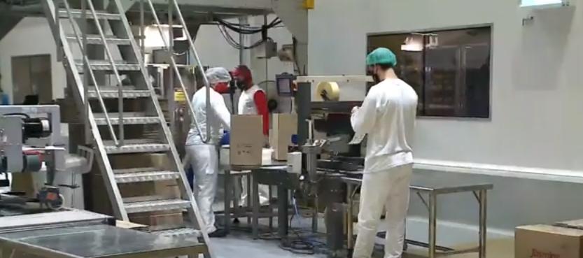 Apesar das dificuldades na pandemia, indústria do Paraná reage e cria empregos
